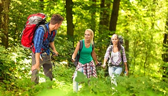 Three friends during an excursion in a sunny broadleaf forest