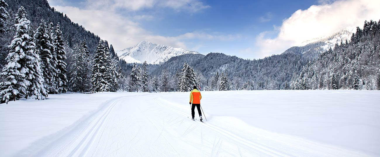 A cross-country skier alone on a slope surrounded by trees covered in snow