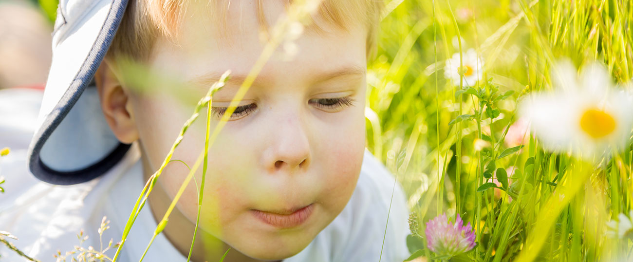 Young boy laying in the high grass and looking at a margeruite